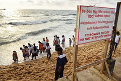 Ignore warning signs at the beach. Crowd of people watching the sunset ignoring warning signs about poisonous sea creatures at Gall face, Colombo, Sri Lanka Stock Photo