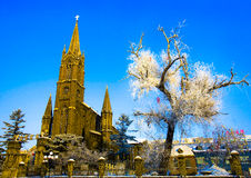 A igreja & a geada cobriram a árvore Fotos de Stock Royalty Free