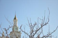 Igreja atrás do ramo da flor cor-de-rosa bonita Foto de Stock Royalty Free