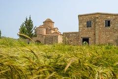 Igreja bizantina do século VI do monastério de Panayia Kanakaria atrás dos lúpulos da cevada imagem de stock royalty free