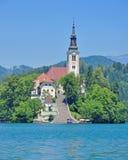 Igreja da suposição, lago sangrado, Eslovênia Foto de Stock Royalty Free