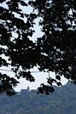 Igreja de San Bernardino, Cinque Terre, árvores do betweet Um dos monast?rios nas montanhas de Liguria Cinque Terre imagem de stock