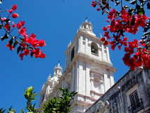 Igreja de Sao Vicente de Fora, royalty free stock photo