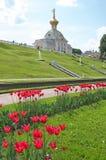A igreja em Peterhof Fotografia de Stock