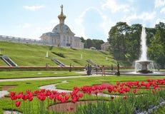 A igreja em Peterhof Fotografia de Stock Royalty Free
