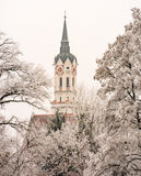 Igreja em Schrobenhausen atrás das árvores geadas Fotos de Stock Royalty Free
