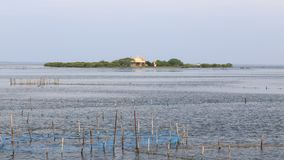 Igreja na ilha Jaffna - Sri Lanka de Kuruchadditivu foto de stock royalty free