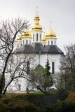 Igreja nas árvores Igreja Igreja velha em Chernigov Abóbada dourada history Cidade velha fotos de stock royalty free