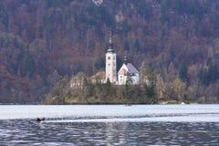A igreja no islad pequeno do lago Bled fotografia de stock royalty free