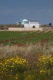 Igreja ortodoxa grega Chipre Foto de Stock