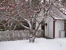 Igreja rústica no Natal Fotografia de Stock Royalty Free