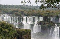 瀑布Iguacu 图库摄影