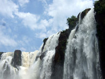 Iguacu cade sosta nazionale fotografie stock