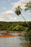 Iguacu calmo Foto de Stock