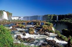 Iguacu Fälle Stockbild