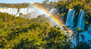 Iguacu Falls from the Argentina side Stock Images
