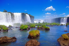 Iguacu Falls, Brazil. The spectacular Iguacu Falls on the Brazil side Royalty Free Stock Photography