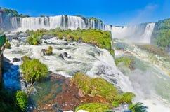 Iguacu nedgångar med regnbågen Royaltyfri Foto
