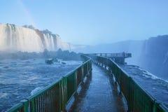 Free Iguacu Waterfalls Royalty Free Stock Image - 35519996