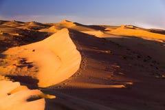 Igualaci?n de paisaje del desierto Luz y sombras por la tarde en las arenas fotos de archivo libres de regalías
