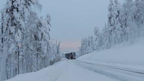 Igualación del camino en el bosque del invierno almacen de metraje de vídeo
