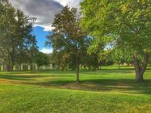 Igualación del paseo en el parque que disfruta de la temperatura caliente del verano fotos de archivo
