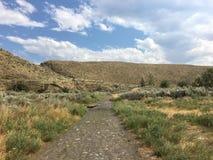 Igualación del paseo en la naturaleza que disfruta de la temperatura caliente del verano imagen de archivo
