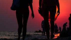 Igualación del paseo a lo largo de la costa almacen de video