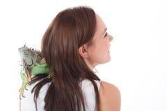 Iguana στον ώμο στοκ φωτογραφίες με δικαίωμα ελεύθερης χρήσης