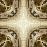 Iguana abstrakt 4 Zdjęcie Stock