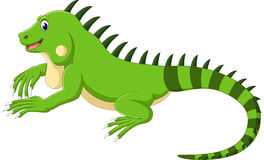 Iguana bonito ilustração stock