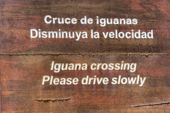 Iguana Crossing Sign Closeup Royalty Free Stock Photo