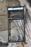 Iguana inside burned building Royalty Free Stock Images