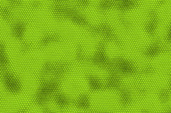 Iguana leather. Texture of iguana skin, a close-up, green color Royalty Free Stock Photos