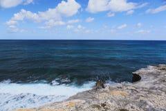 Iguana na plaży obraz royalty free