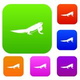 Iguana set collection. Iguana set icon in different colors isolated vector illustration. Premium collection Stock Images