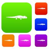Iguana set collection. Iguana set icon in different colors isolated vector illustration. Premium collection Stock Image
