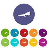 Iguana set icons Stock Images