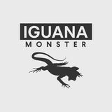 Iguana silhouette Stock Photos