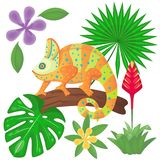 Iguana on the tree and jungle plants. Chameleon between palm and monstera leaves. Vector illustration. Cartoon style vector illustration
