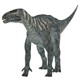 Iguanodon草食动物恐龙 图库摄影