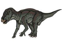 Iguanodon Imágenes de archivo libres de regalías