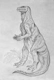 Iguanodon dinosaur portrait Royalty Free Stock Photo
