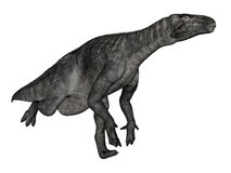 Iguanodon dinosaur running - 3D render Stock Photography