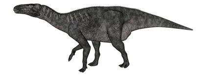 Iguanodon dinosaur walking - 3D render Royalty Free Stock Image