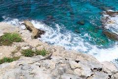iguany Morze Karaibskie Isla Mujeres Meksyk fotografia royalty free