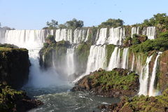 iguassu瀑布 库存图片