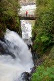 Iguassu-Fälle, die größte Reihe von Wasserfällen der Welt, Argenitna-Seite stockbild