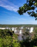 Iguassu fällt von fern Stockbilder