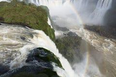 Iguassu faller nationalparken Royaltyfri Fotografi
